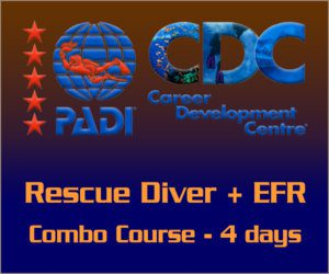 PADI Combo Rescue with EFR Course