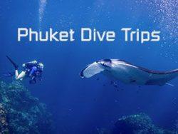 Excursions Plongées depuis Phuket