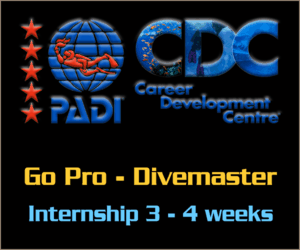 PADI Go Pro Divemaster Internship program