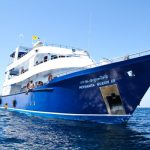 Similan Islands Liveaboard - Manta Queen 3 (2)