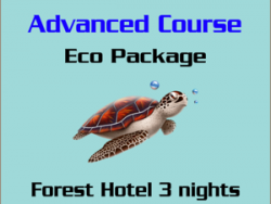 Cours PADI Advanced - Forfait Eco